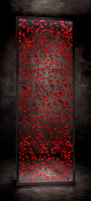 Pétales de roses RÉF. D – 007